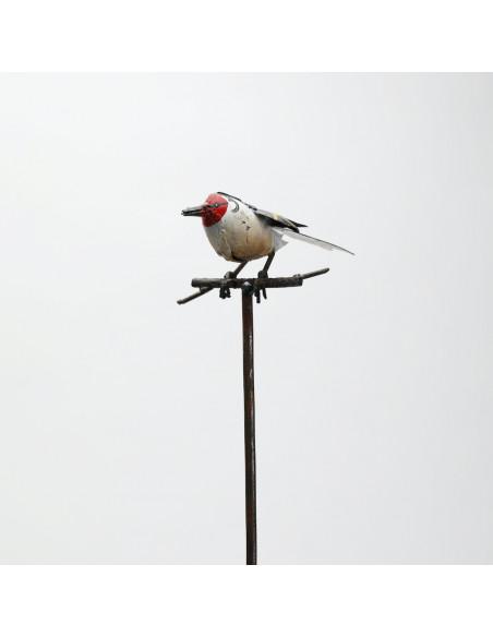 Tuteur Chardonneret Élégant-Tuteurs oiseaux