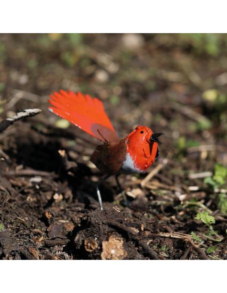 Rouge queue en métal peint - Décoration-Petits oiseaux