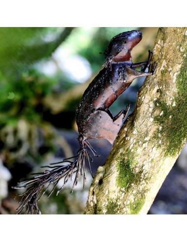 Écureuilbrutà accrocher-Animaux sur pattes