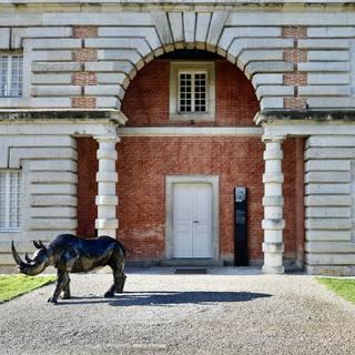 """Touche pas à mon Rhino, sculpture """"life size"""" en métal recyclé #monrhino #rhinoceros #sculpturemétal #artmetalrecuperation #lesoizeaux #lesoizeauxdepassage #salineroyale #arcetsenans"""