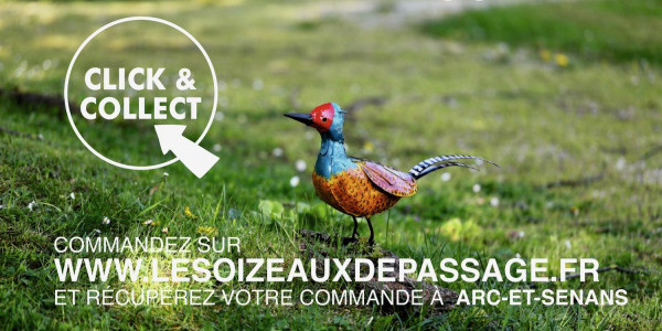 LE CLICK AND COLLECT DES OIZEAUX DE PASSAGE - ARC ET SENANS